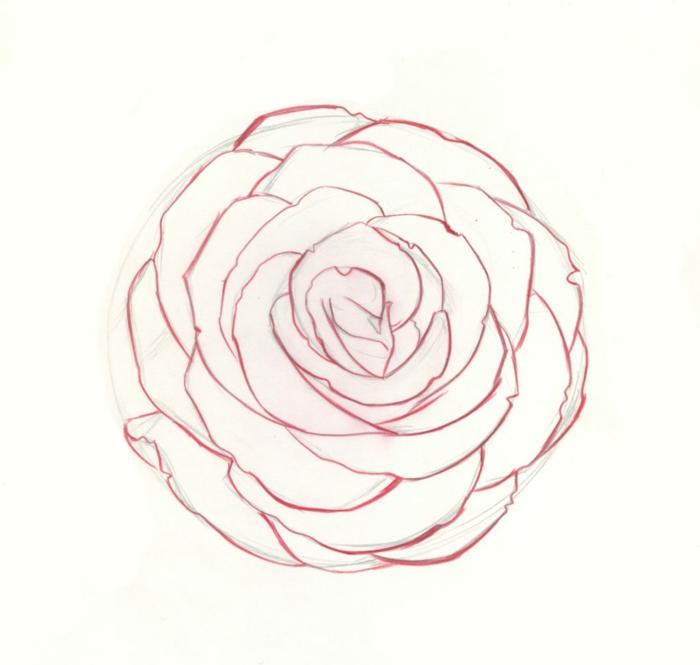 dibujo rosa bonito y fácil de hacer en casa, las mejores ideas de dibujos movitos florales fotos para descargar o calcar
