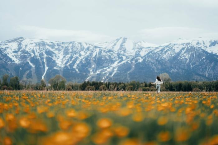 paisajes montañosos que verdaderamente inspiran, los mejores fondos de pantalla en bonitos colores primaverales