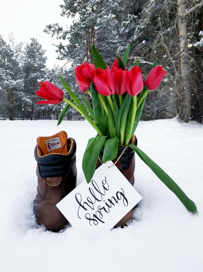 botas con tulipanes en la nieve, paisajes preciosos e impresionantes para descargar, fotos de fondos de pantalla originales