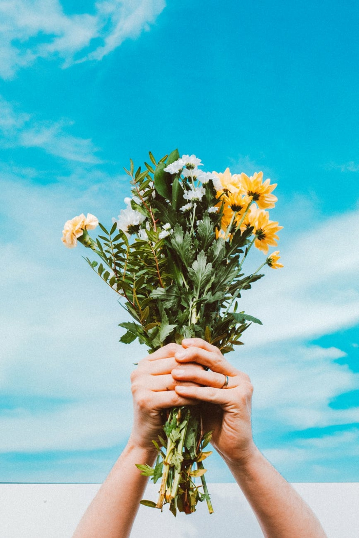 imagenes con flores para descargar, ideas de fondos de pantalla de flores para descargar y poner como fondos de pantalla
