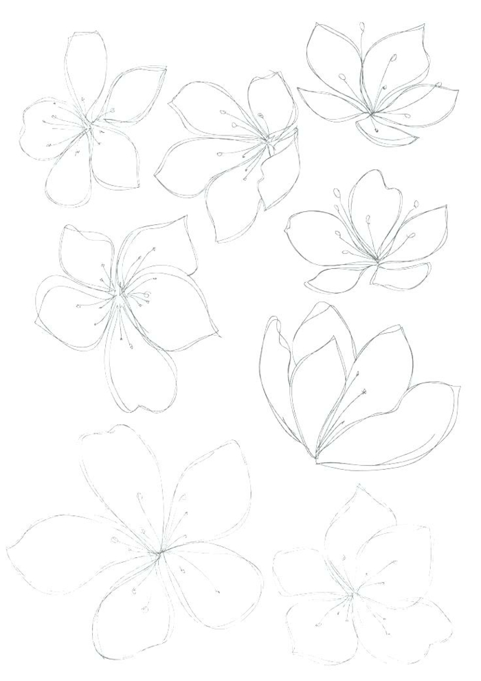 excelentes ideas de dibujos de flores sencillos para principiantes, fotos de dibujos para niños y adultos, aprender a dibujar