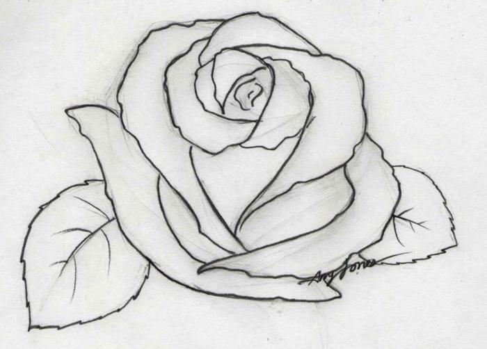 como dibujar una rosa a lapiz paso a paso, ideas de dibujos para calcar, originales ideas de dibujos para tu niño en imagenes
