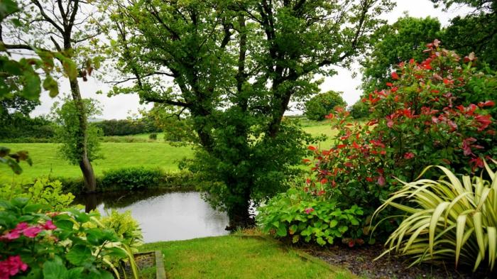 parque con muchos arbustros, flores y plantas verdes, Ideas de fondos de pantalla de flores para descargar y poner como fondos de pantalla