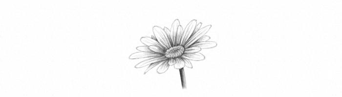 flor girasol bonita super fácil de hacer, dibujos a lapiz faciles, ideas de actividades para niños de primaria originales
