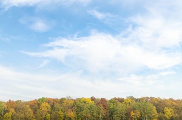 bosque bontio en primavera, las mejores imagenes de paisajes de naturaleza en primavera, fondos de pantalla paisajes