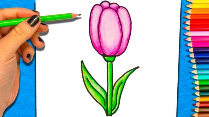 pasos sencillos para dibujar un tulipan con lapices de colores ideas de dibujos para compartir, tutoriales faciles de hacer