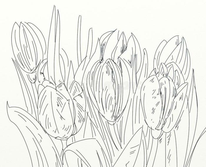 cosas para dibujar en primavera, bonitas ideas de dibujos de flores primaverales, ideas de como dibujar una rosa, flores dibujos a lapiz, dibujos con acuarelas,
