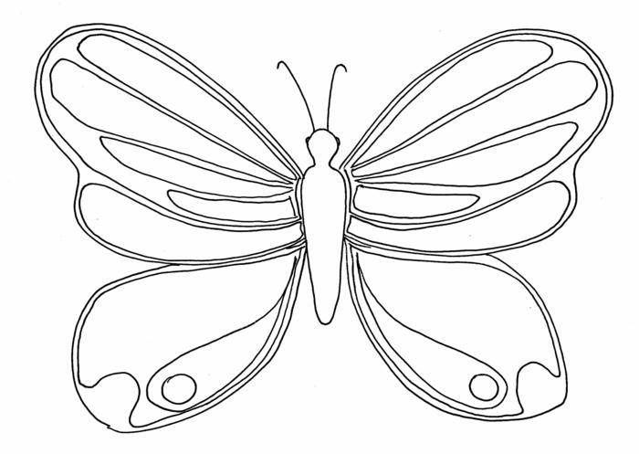 como dibujar una mariposa, ideas de dibujos sencillos y bonitos para los mas pequeños, dibujos para colorear en fotos