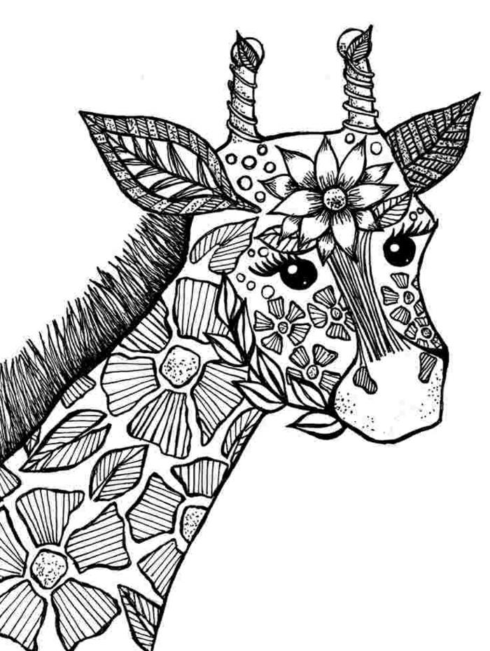 dibujos para colorear de adultos, pequeño jirafa ornamentado, fotos de dibujos faciles de hacer en casa, cosas para colrear