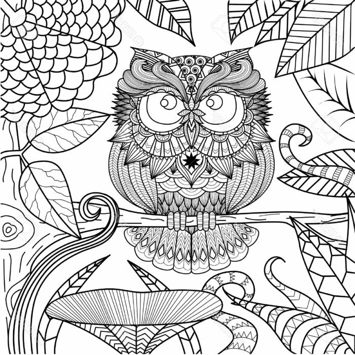 dibujos para colorear adultos, originales diseños de dibujos, paginas de colorear para adultos, fotos con detalles para pintar