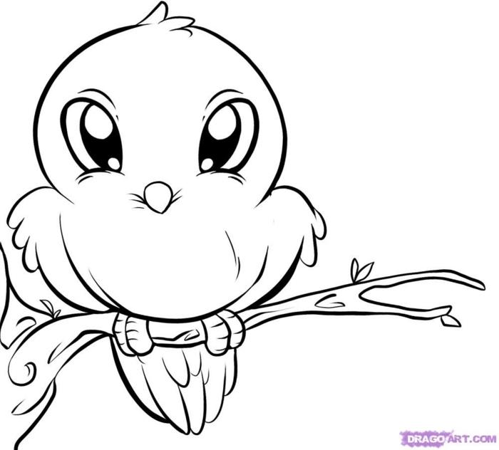 como dibujar una ave, animales para colorear chulos, ideas de dibujos kawaii para redibujar o colorear, galeria con imagenes de dibujos