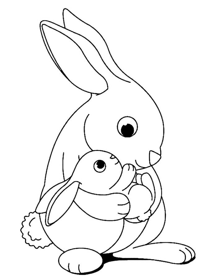 dibujos chulos de animales, animales para colorear faciles, fotos de animales para pintar en casa, dibujos simpaticos
