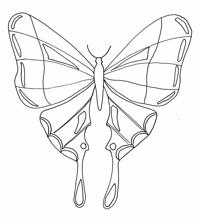 bonito dibujo de mariposa que puedes descargar gratis, imprimir y colorear, fotos de dibujos para pintar originales y bonitos