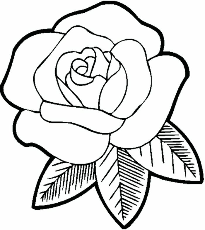 dibujo de rosa sencillo para descargar y pintar, los mejores ejemplos de dibujos para colorear en casa, fotos de dibujos