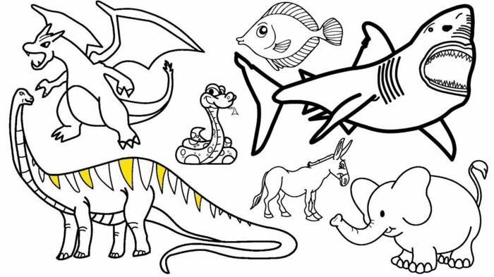 animales para redibujar y colorear en casa, fotos de dibujos para pintar, ideas de animales para colorear para niños pequeños