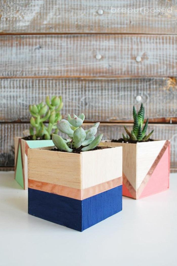 regalos para el dia de la madre caseros, macetas de madera originales, macetas con cactus, ideas de regalos para decorar la casa