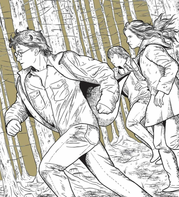 excelentes ideas de dibujos de harry potter para colorear, paginas de colorear originales, ideas de dibujos de harry potter