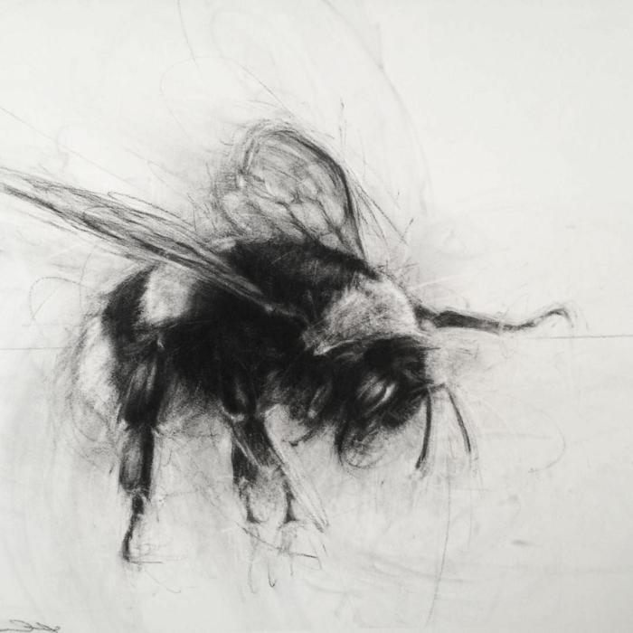 impresionante dibujo de abeja, dibujos en blanco y negro, dibujos faciles de hacer, fotos de dibujos originales dibujos en blanco y negro, dibujos faciles de hacer