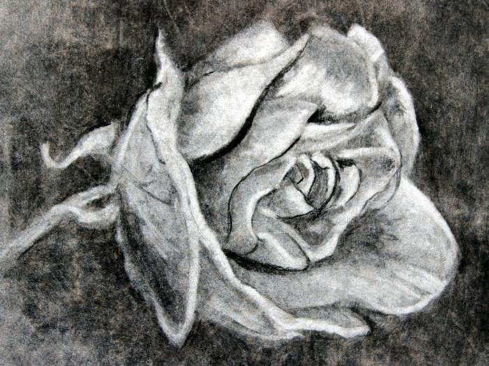precioso dibujo de rosa en estilo realista, dibujos de blanco y negro chulos, ideas de dibujos de paisajes, dibujos realistas