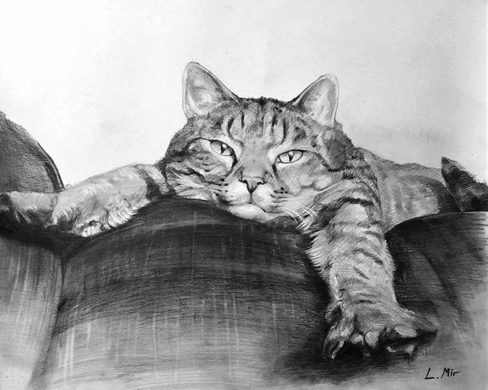 dibujos de mascotas en blanco y negro, ideas de dibujos de animales chulos, dibujos de paisajes, dibujos realistas en fotos