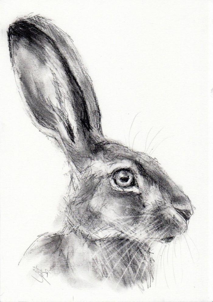 dibujos de animales en estilo realista en blanco y negro, ideas de dibujos chulos simbolicos, fotos de dibujos