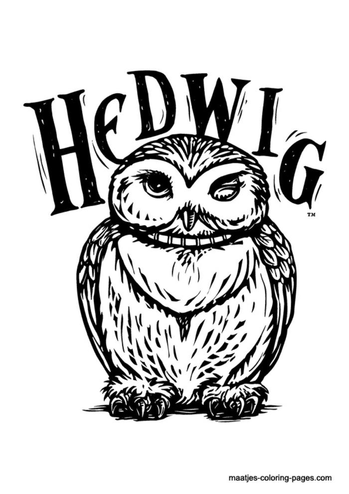 dibujo del buho hedwig, impresionantes ideas de dibujos en blano y negro, fotos de dibujos de animales y criaturas magicas
