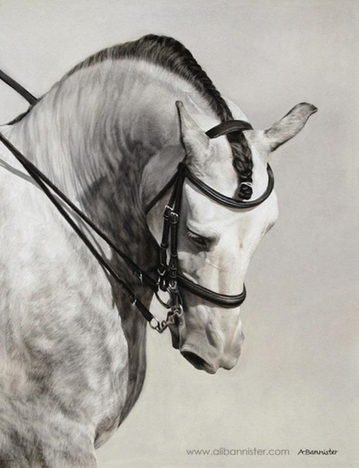 animales dibujados en estilo realista, fotos de dibujos de animales, dibujos de paisajes, dibujos realistas