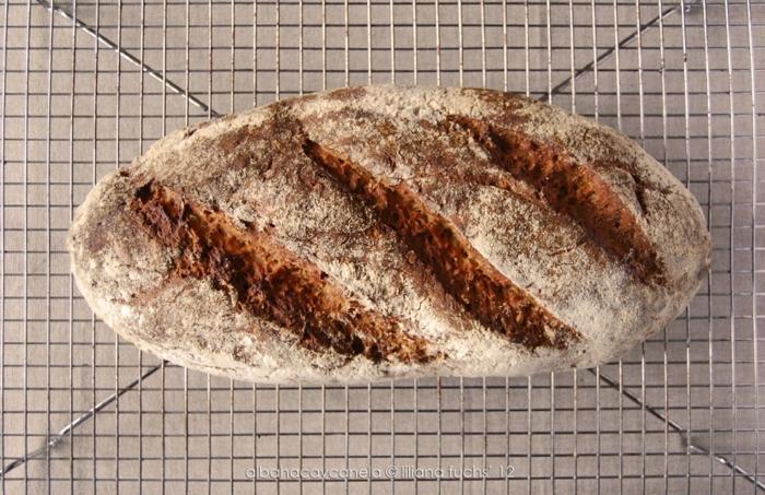pan integral con corteza, ideas de recetas de pan rico y facil de preparar, ideas de recetas, hacer pan en casa recetas