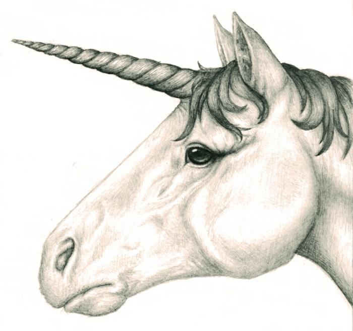 los mejores ejemplos de dibujos de unicornios a lapiz, dibujos a lapiz faciles, dibujos kawaii para colorear, dibujos en blanco y negro, dibujos faciles de hacer