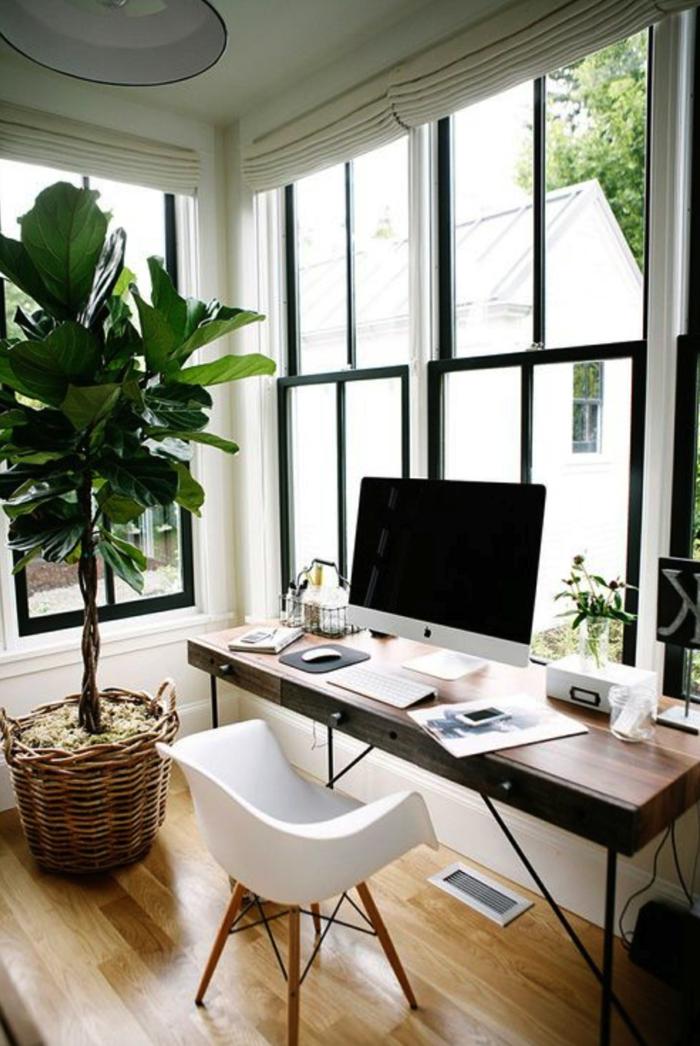 ideas para decorar tu despacho en casa, grande planta verde, ideas de gabinetes decorados con mucho encanto