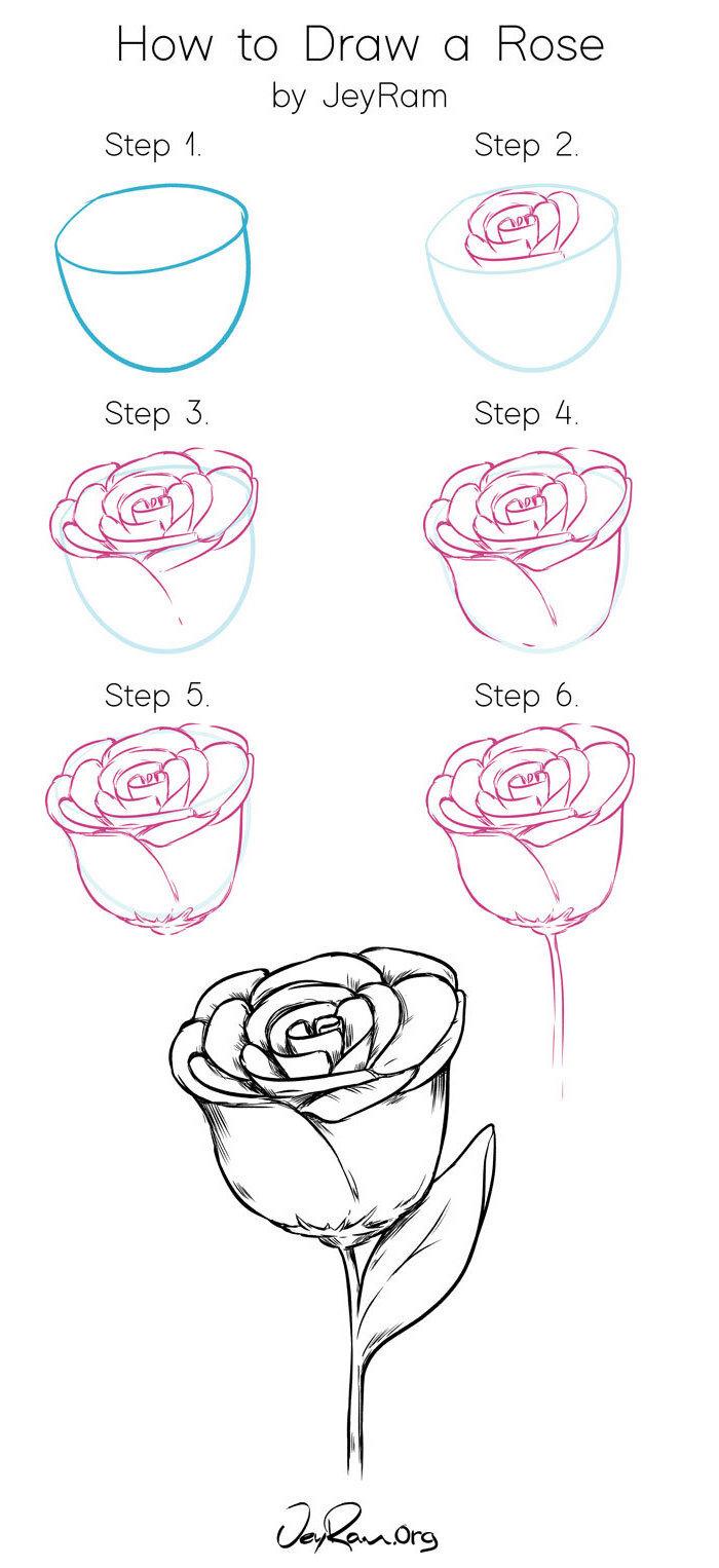 0 pasos para hacer una rosa dibujo ideas originales sobre com dibujar una rosa paso a paso petalos de rosa