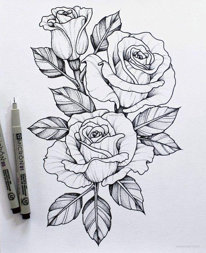1 a dibujar una rosa a lapiz marcador negro los mejores vdibujos de rosas fotos de dibujos en blanco y negro