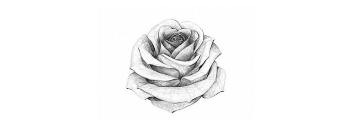 1 bonito dibujo de rosa a lapiz originales ideas de dibujos de rosas fotos de dibujos en blanco y negro ideas de dibujos