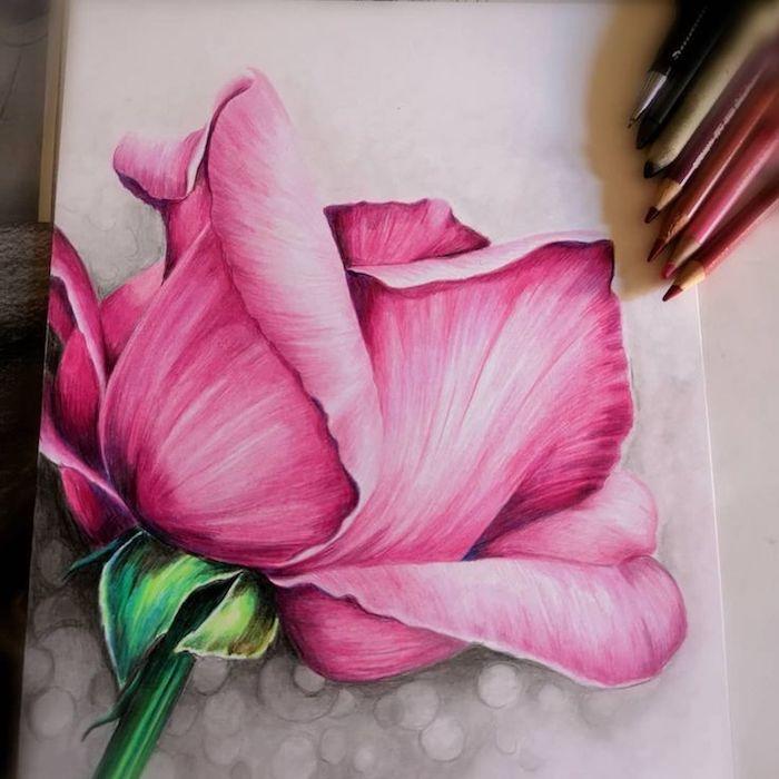4 inspiradores ejemplos de rosas dibujadas con lapices de color dibujos de flores bonitos ideas de dibujos originales