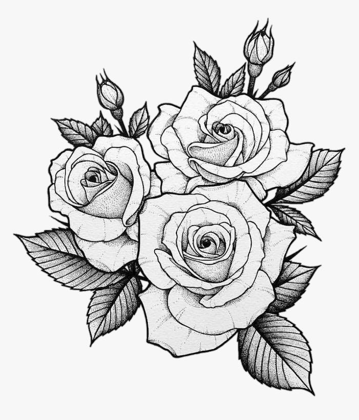 a dibujar rosas petalos hojas verdes ideas de dibujos de flores en blanco y negro rosas bonitas dibujos