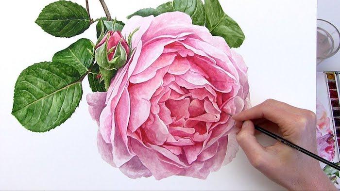a dibujar una peonia en colores flores bonitas para dibujar etapas para dibujar una rosa paso a paso