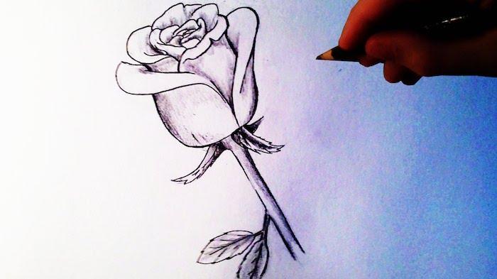 a dibujar una rosa a lapiz fotos de dibujo a lapiz ideas de dibujos dibujos de rosas a lapiz