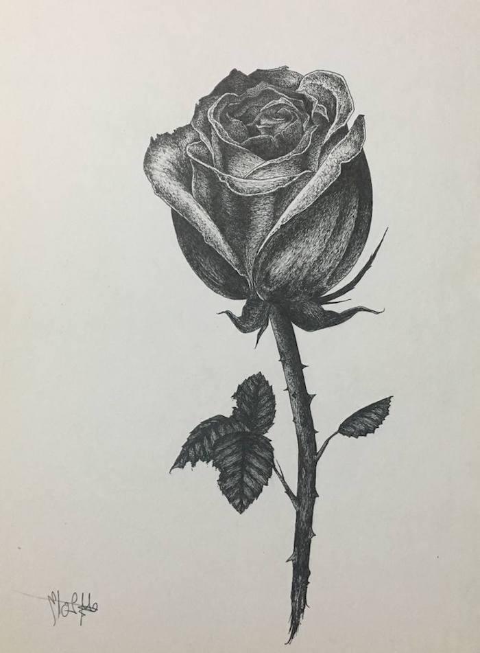 a dibujar una rosa a lapiz ideas de dibujos de flores dibujos faciles y bonitos los emjores dibujos de rosas para redibujar