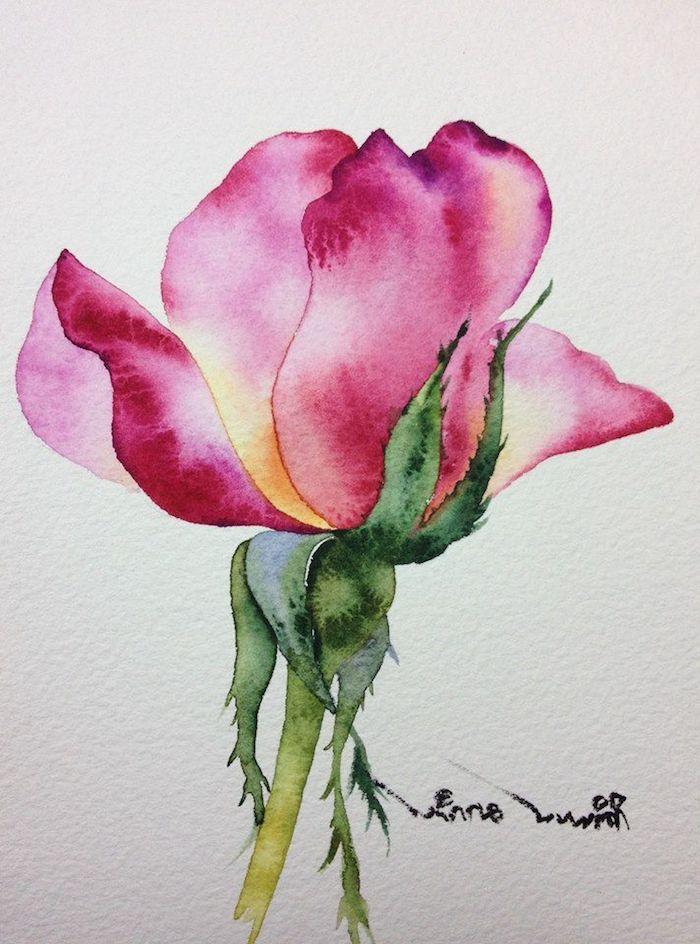 a dibujar una rosa colores para rsas dibujos de rosas faciles dibujos de rosas y flores faciles de hacer en fotos