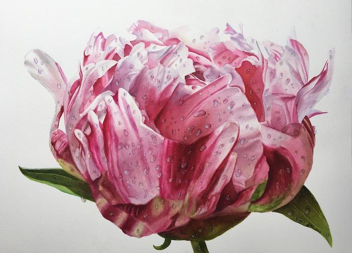 a dibujar una rosa dibujos con acuarelas dibujos de flores dibujos con acuarela geniales ideas de dibujos