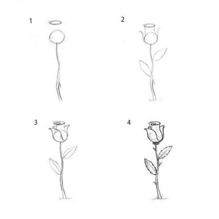 a dibujar una rosa petalos ideas de dibujos faciles de hacer fotos de dibujos chulos ideas de dibujos de flores originales