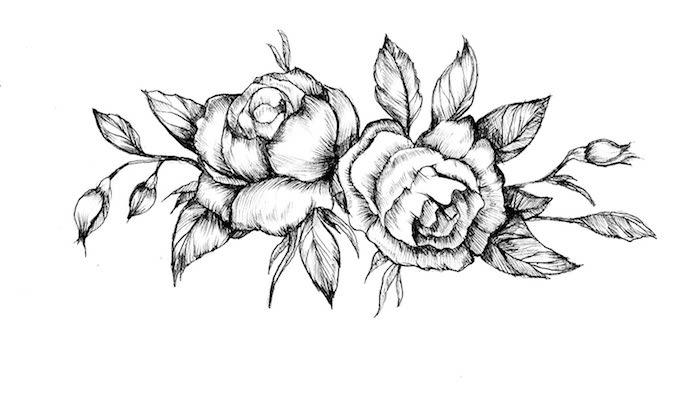 aprender a dibujar dibujos de flores rosas y peonias dibujo dis rosas ideas dibujos faciles y bonitos