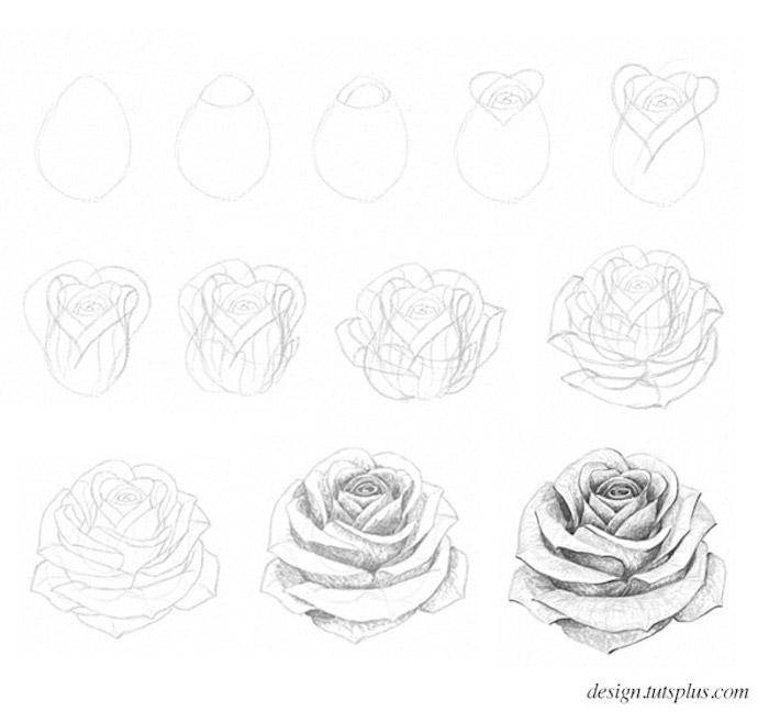 aprender a dibujar flores como dibujar una rosa dibujos de flores bonitos fotos de dibujos de rosas chulos