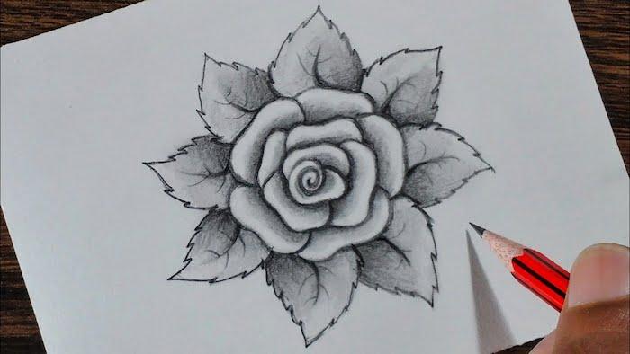 aprender a dibujar flores dibujos de rosas bonitas ideas de dibujos para principiantes y avanzados