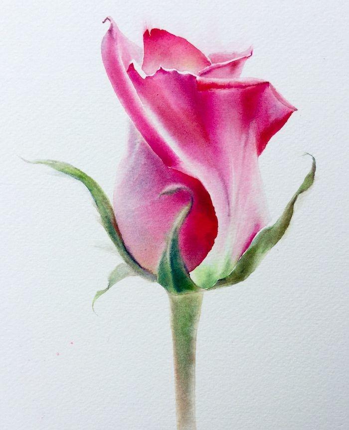 aprender a dibujar rosas dibujos de rosas faciles dibujos en acuarelas que inspiran ideas de dibujos