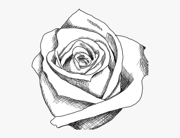 blanco y negro dibujo rosa ideas de dibujos faciles y bonitos de rosas para redibujar como dibujar una rosa