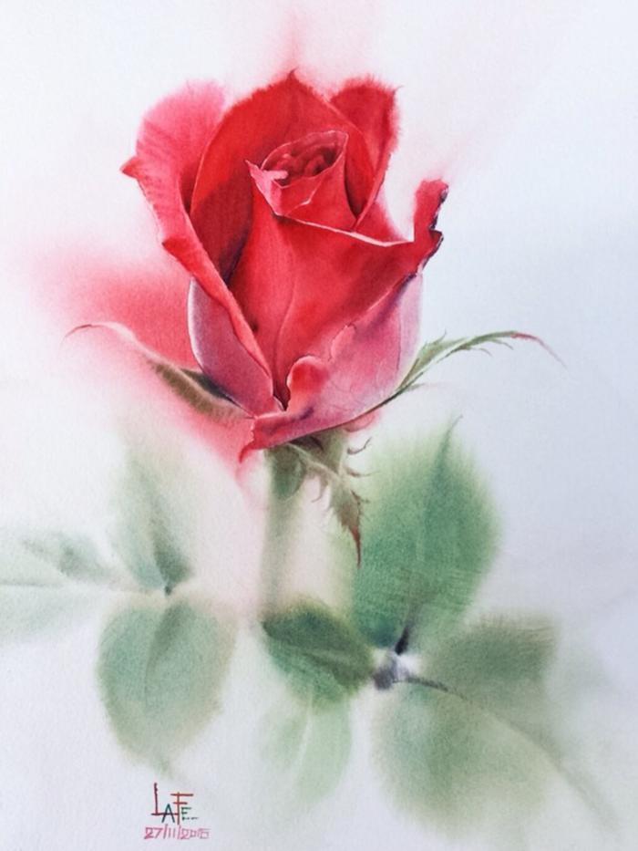 bonitos dibujos de rosas dibujadas en acuarelas dibujos de rosas faciles fotos de dibujos inspiradores de flores