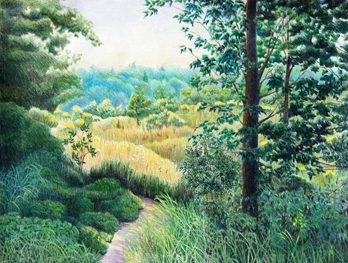 bosque arboles hierbas arbustos ideas de dibujos paisajes dibujos a lapiz fotos de pasajes de naturaleza dibujados