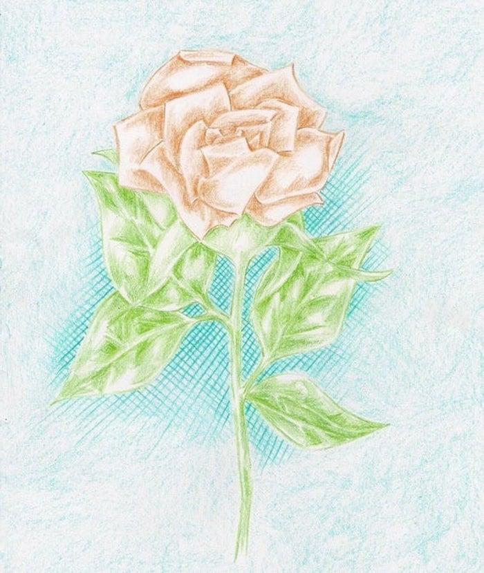 dibujo rosa color lapiz dibujos de rosas faciles de hacer fotos de dibujos chulos