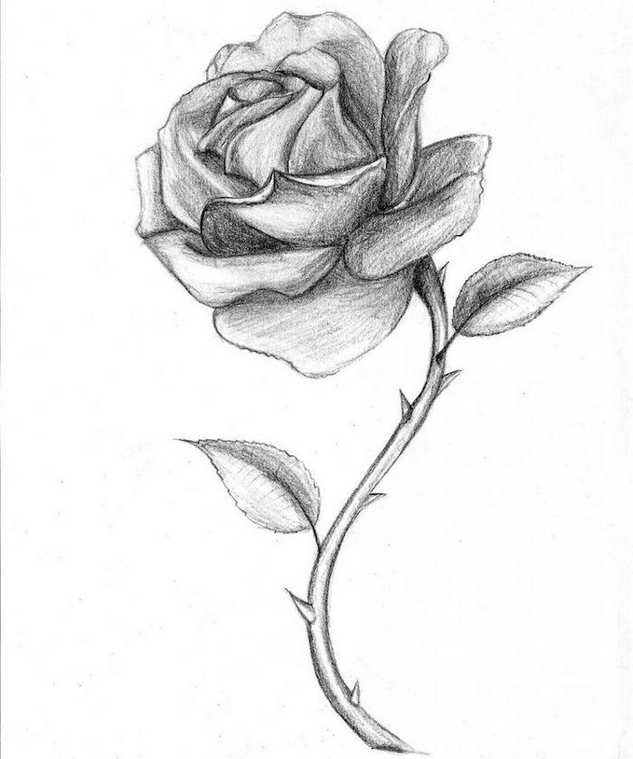 dibujos de rosas a lapiz ideas de dibujos faciles de hacer como hacer dibujos a lapiz originales paso a paso